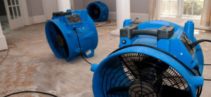 Blue Bell Water Flood Restoration